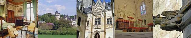 château de Ternay à 14km du gîte de France le logis d'Adrienne